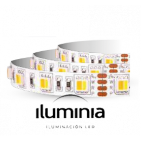 TIRA LED SMD2835 TEMPERATURA REGULABLE PLUS line SMD2835 IP20 19,2 W/m 10 mm 2200-6000 K de Iluminia